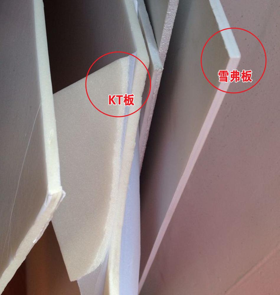 手持kt板拍照平面素材